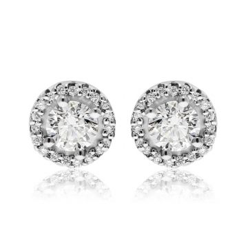 NEI Group 14k Gold Halo Stud Earrings